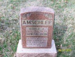 Adolf A Amschler