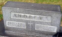 Anne I Andrews