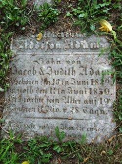 Aloysius Addison Adam