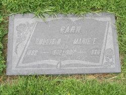 Marie Elizabeth <i>Palmer</i> Carr