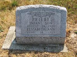 Elizabeth Ann Priebe