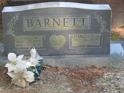 James W Barnett