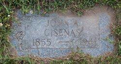 John Gisenas