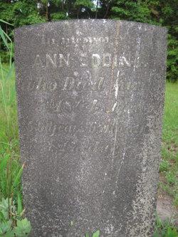 Ann Bodine