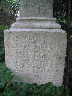 Charity <i>Rogers</i> Dobbins