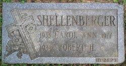 Mrs Carol Shellenberger
