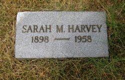 Sarah M Harvey
