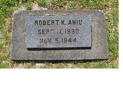 Robert K Aniu