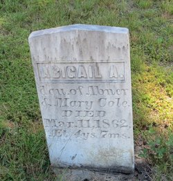 Abigail A Cole