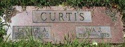 George A. Curtis