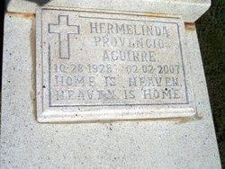 Hermelinda <i>Provencio</i> Aguirre