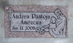 Andrea Pantoja Amezcua