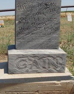 David Austin Cain