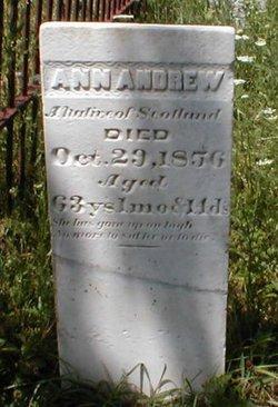 Ann Andrew