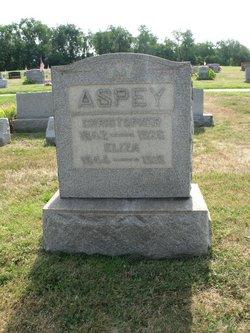 Eliza <i>Newcomer</i> Aspey