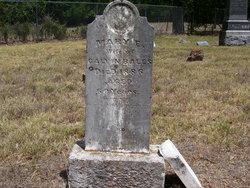 Mary Elizabeth Sarah <i>Hale</i> Bales