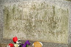 Hollis Burrow