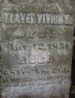 Flavel Vivion
