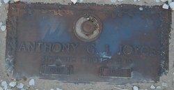 Anthony G.J. Joyce