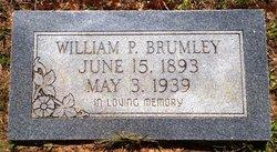 William P Brumley