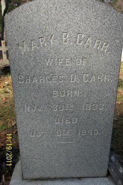 Mary B <i>Didlake</i> Carr