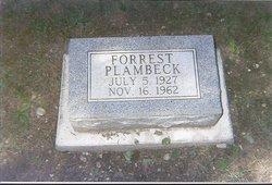 Forrest Plambeck