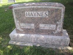 Jesse Haynes