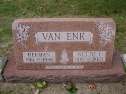 Nettie Irene <i>Feyen</i> Van Enk