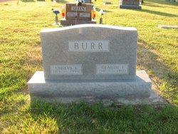 Anneva Lila <i>Brownfield</i> Burr