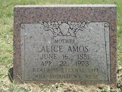 Alice <i>Lavender</i> Amos