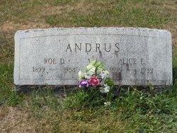 Alice E. <i>Sturdevant</i> Andrus