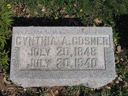 Cynthia Ann <i>Mavity</i> Cosner