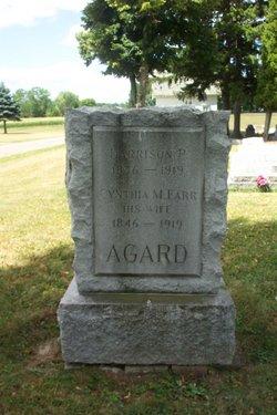 Harrison P Agard