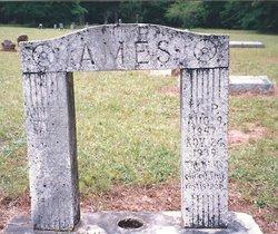 Anne Elizabeth Annie <i>Bailey</i> Ames