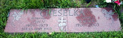 John Cheselka