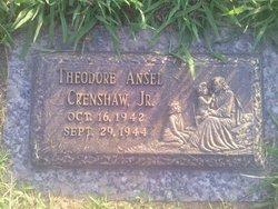 Theodore Ansel Crenshaw, Jr