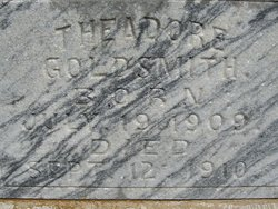 Theadore Roosevelt Teddy Goldsmith