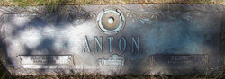 Alfred Peter Anton