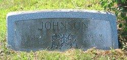 Rosa <i>Fritsch</i> Johnson