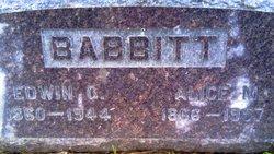 Alice M Babbitt