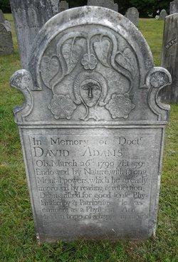 Dr David Adams