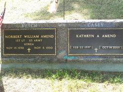 Kathryn Ann Casey <i>Healy</i> Amend