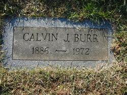Calvin J. Burr