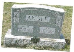 Sarah Jane <i>VanVliet</i> Angle
