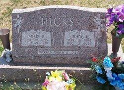 Rose Ann <i>Neece</i> Hicks