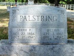 William Palstring