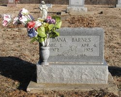 Dana Barnes