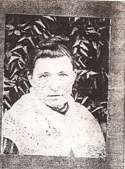 Millie Arminda Ol' Missy <i>Gosler</i> Hovater
