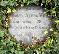 Agnes Weber