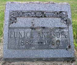 Eunice Mabel <i>Paye</i> Antisdel